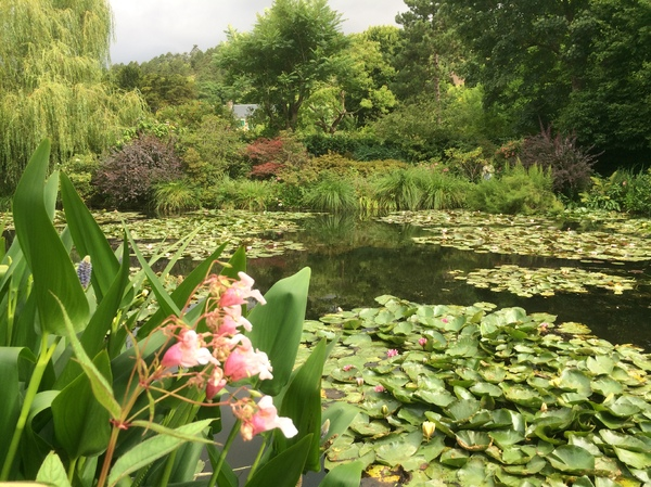 Monet's Garden in Giverny: Claude Monet's Garden in Giverny, France