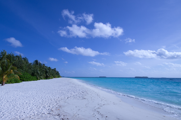Tropical Beach 1: Beaches in the Maldives