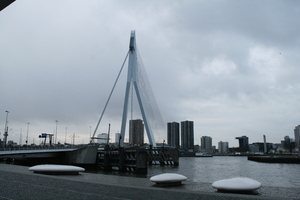 The Erasmus Bridge: The most famous bridge in Rotterdam.