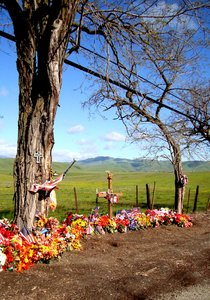 shrine: roadside marker