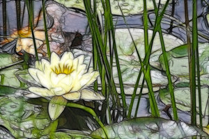 Flowers Monet Style: Waterlily and poppies Monet style.