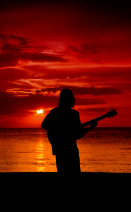 Jamaican Nights: Reggae guitar