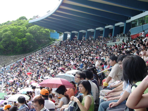 crowd: took this while waiting for a show to begin in ocean park in hong kong... figured it might become useful to anyone who needs a crowd shot...