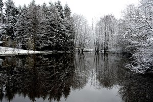 winter lake: No description