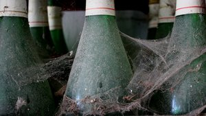 cobwebbed wine bottles: no description