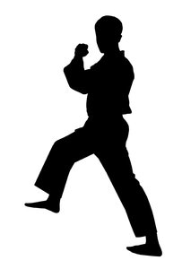 Karate 1: Silhouette of fighter