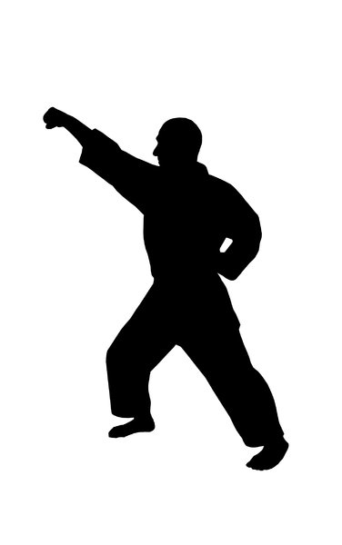 Karate 5: Silhouette of fighter