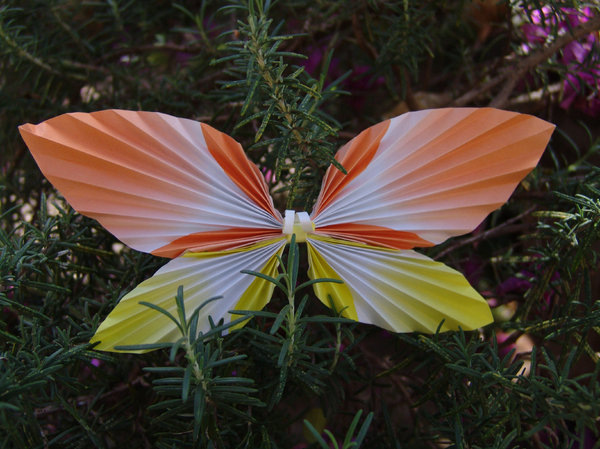 Butterfly: An origami Butterfly.