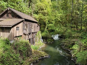 Gristmill in the Woods: A Gristmill, which is a mill that grinds grains, along the river that powers it.
