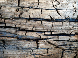 cracked wood: old cracked wood I found in a old windmill