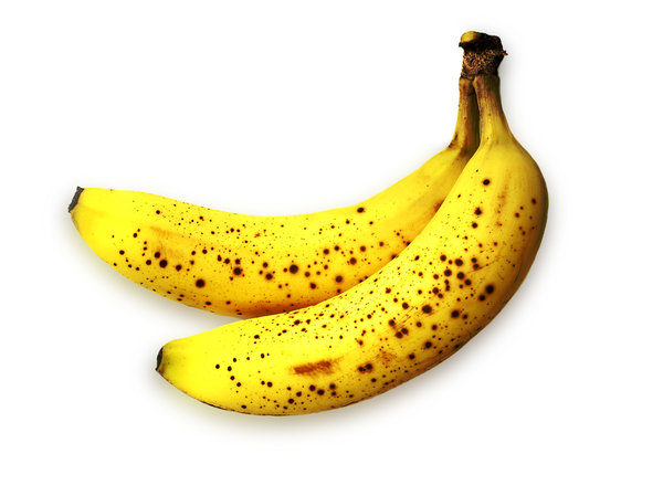 bananas: Ordinary bananas and Photoshop doesn't transform me into the new Andy Warhol. Sorry.high resolution image available:http://www.stockxpert.com ..