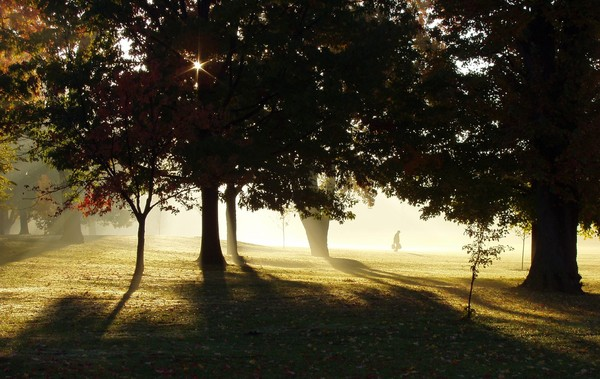 Lawton Park in the morning: Lawton Park, Fort Wayne, Indiana