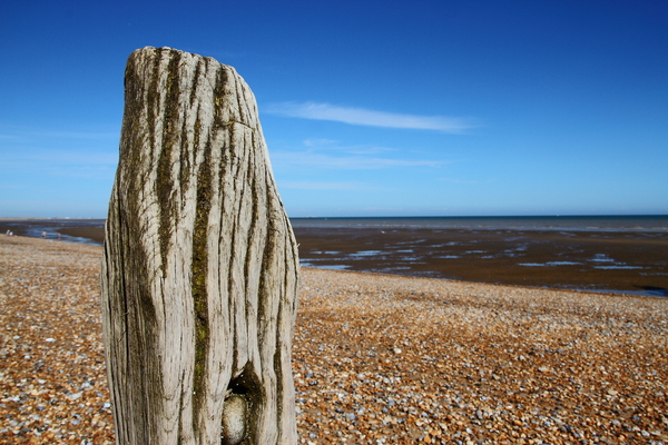 Old wooden post: An eroded wooden post on a beach against a bright blue sky