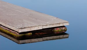 Reflection: Reflection in a habour