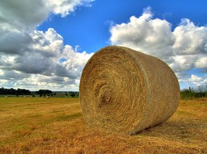 Hay - HDR: Rolls of hay - all ready to go. The picture is HDR.