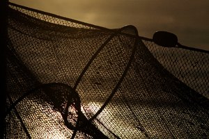 Fishing net in baacklight: Fishing net in backlight
