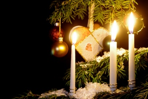 Christmas tree and candles: Christmas tree with three burning candles