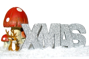 Xmas mushroom and deer: Decoration mushroom, deer and the letters spelling xmas on snow. Isolated with white background.