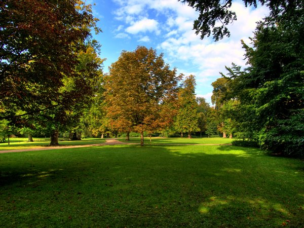 Autumn park - HDR: Early autumn is pale green and the beginning of orange and red