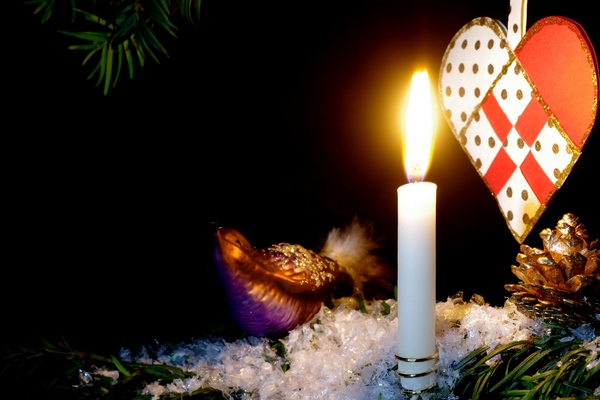 Christmas tree with bird: Christmas tree with burning candle, cone, heart and a small decoration bird on snow. Black background.