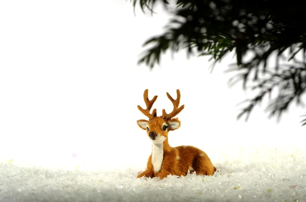 Deer in snow: Decoration deer in snow under a pine branch