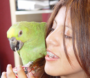 My Girl Too: Daughter with baby Yellow-naped Amazon Parrot