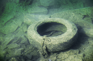 old tire in water: old tire in water