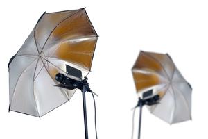 studio umbrella lights: studio umbrella lights ready to use