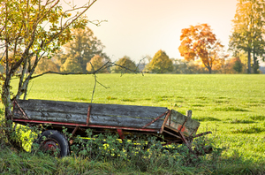 Given Up Trailer: Old Trailer resting in Bushes, Meadows and Autumn Trees behind. Shallow DOF. HDR Picture.