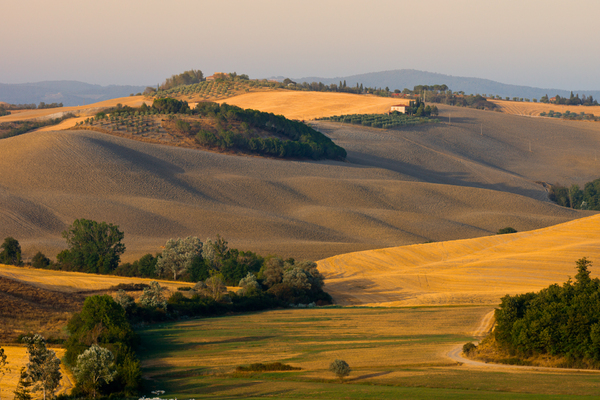 Tuscany View: View over hilly Landscape in Tuscany