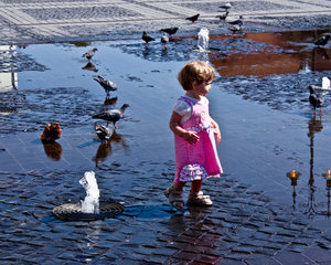 little girl with pigeons: little girl with pigeons