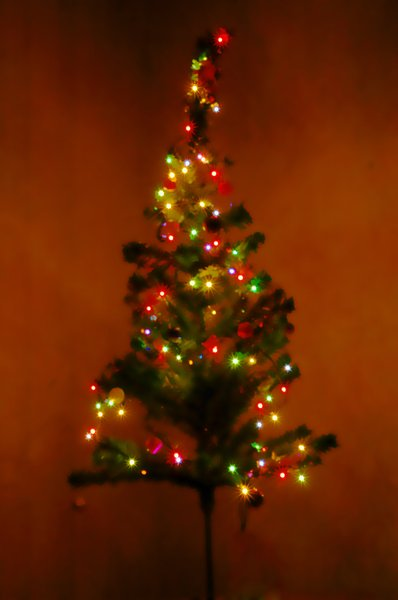 Christmas tree 1: dewy xmas tree