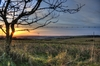 Sunset in Sussex: Up on the Sussex downs in Autumn