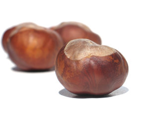 chestnuts time: none