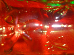 Glass: Close up of green bottle on the red background