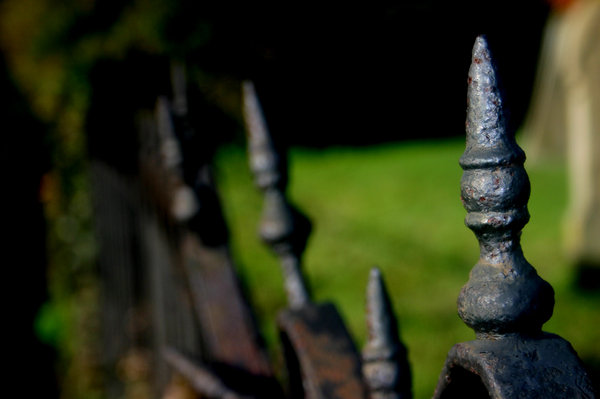 Broken Ranks: I thought these little spikes on a fence looked like tiny soldiers... but their ranks had been broken by the test of time.