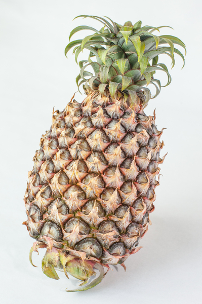 Pineapple 5: Photo of pineapple