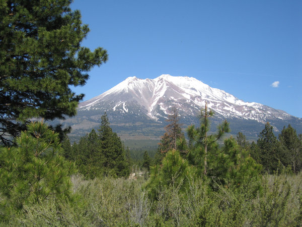Snow on Mt Shasta: Snow on the summit of Mt Shasta,California