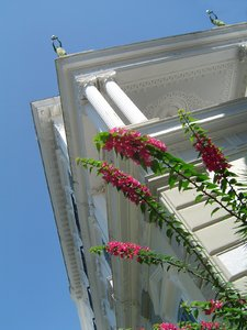 Achilleion palace - skywards: Achilleion palace in Korfu,Greece. Low-angle shot with flowers, facade and statues on the roof