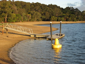 Jetty at Lysterfield Lake: The jetty is an access for disabled people to get into a boat. The wildlife often uses the jetty to relax