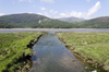 Stream to estuary: A stream feeding the Mawddach Estuary, Wales.