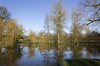 Flooded parkland: Flooded parkland at Tidworth, Wiltshire, England, in winter.