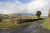 Rural lane in winter: A rural lane in Powys, Wales, in winter