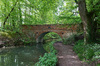 Old canal bridge: An old bridge over the Basingstoke Canal in spring in Hampshire, England.