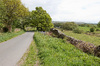 Rural road and landscape: A rural road and landscape in Cumbria, England, in spring.