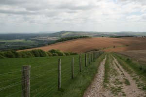 South Downs landscape: Landscape of the South Downs, West Sussex, England, in early autumn.