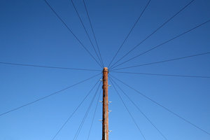 Lines of communication: A telegraph pole in England, with a multiplicity of telephone lines.