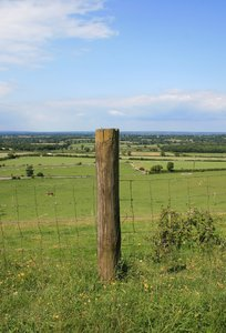 Fence post: A fence post bordering a field on the South Downs, West Sussex, England.