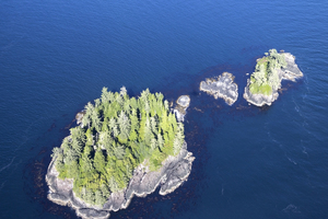 Vancouver Island from the air: Aerial shot of islets on the west coast of Vancouver Island, Canada.