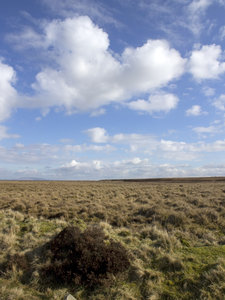 Moorland: Moorland in northern England. Two image photomerge.